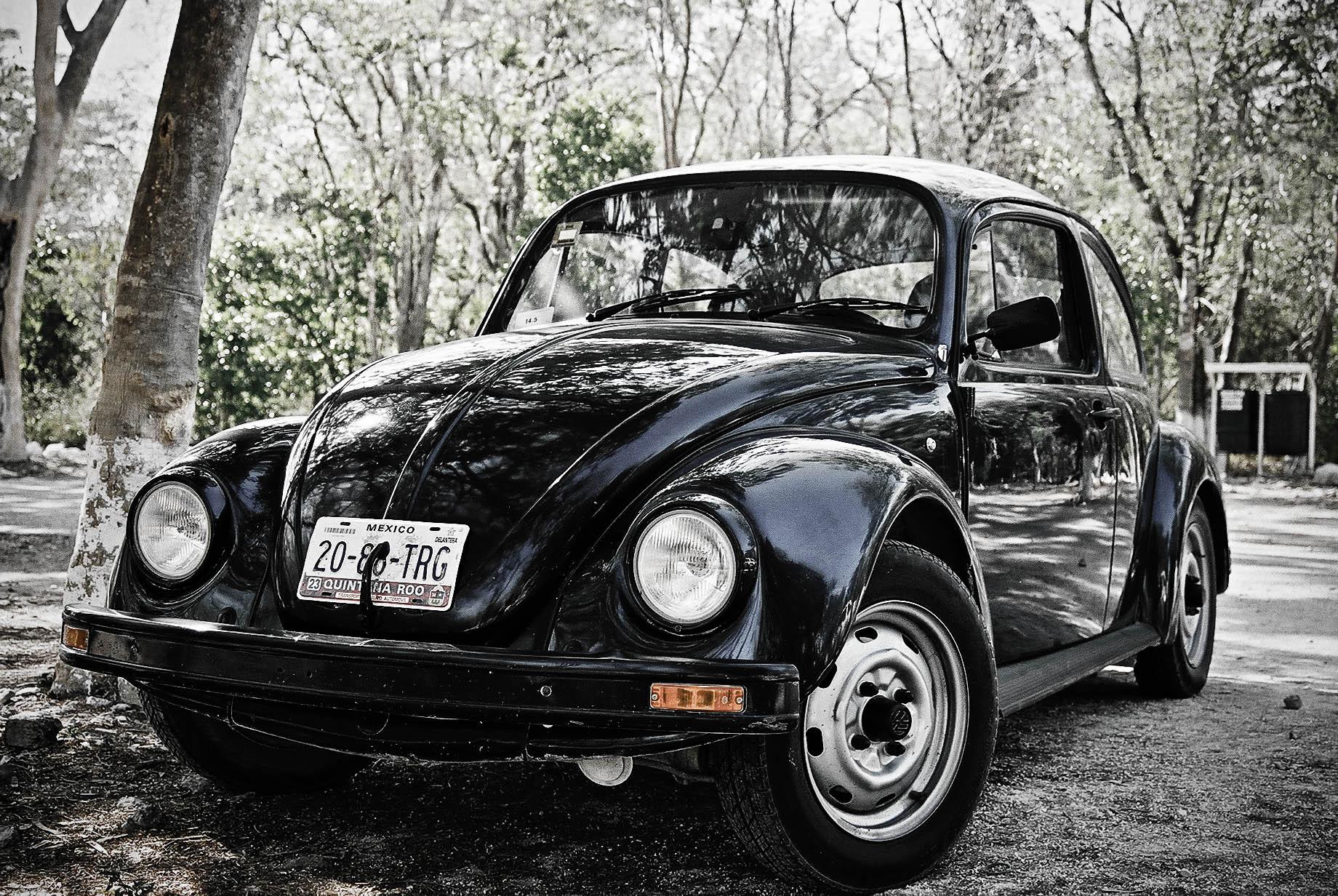 VW Kever Mexico 2003